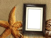 Picture frame on shells and sand background. Pictue frame on shells and sand background. Copy space. 3d rendering stock image