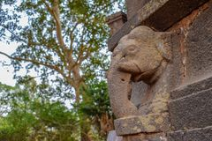Ancient stone carving of a elephant which is ruined during the time royalty free stock image