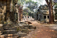 Picture of Angkor Wat Royalty Free Stock Photography