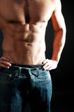 Picture of athletic body Royalty Free Stock Image