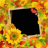 Picture on autumn background Royalty Free Stock Images