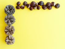 Picture of autumn background with chestnuts and pine cone with c Stock Photos