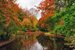 Picture of autumn park with red and yellow trees and lake in the Copenhagen, Denmark. Picture of autumn park with red and yellow trees and lake in the Copenhagen stock images