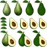 Avocado isolated on white with clipping path. stock photos