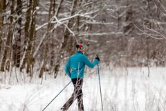 Picture from back of athlete skier in forest at winter. Afternoon Stock Images