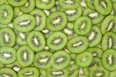 Picture of Backlit Kiwi Slice in studio royalty free stock images