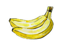 Picture of banana Stock Images