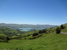 View of a bay on banks peninsula royalty free stock photos