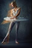 Picture of a beautiful ballet dancer. Stock Photo
