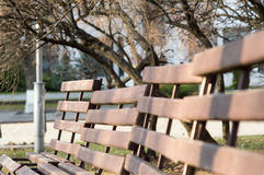 Picture benches in the park Stock Image