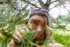 Picture of biologist in forest. Picture of biologist with magnifying glass next to pine in forest on summer day Royalty Free Stock Photography