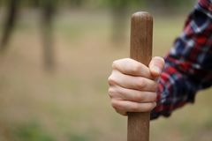 close up image of shovel wood handle and srong wrist of man in bright checkered shirt. Royalty Free Stock Images