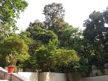 This picture is boldha garden in dhaka, Bangladesh. royalty free stock photos