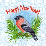 Picture with bullfinch sitting on fir-tree spurce, snowdrifw & hoarfrost frame - Happy New Year. The beautiful vintage style watercolored vector picture for your Stock Photos