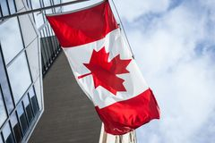 Canadian flag in front of a business building in Toronto, Ontario, Canada. Toronto is the biggest of Canada royalty free stock image