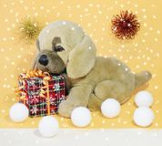Picture of a child`s toy puppy royalty free stock photos