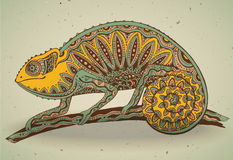 Picture of colorful chameleon lizard in graphic style. Royalty Free Stock Image