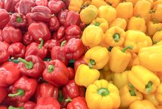 Picture of colorful yellow & green sweet pepper In the market Stock Photography