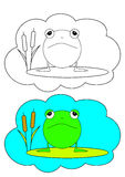 The picture for coloring. Frog. Stock Photography