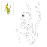 Picture for coloring - sea horse. Stock Photos