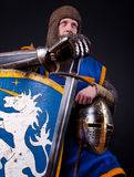 Picture of crusader Royalty Free Stock Image