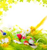 Picture of Decorative eggs in the nest Royalty Free Stock Photo