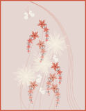 Picture design floral Royalty Free Stock Photos