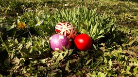 Easter eggs on grass. Picture of easter eggs on grass. Sunny day blue sky Royalty Free Stock Images