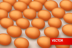 Picture of egg back. Illustration of a lot eggs lying on the brown background vector illustration