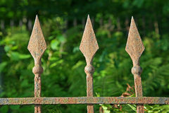 The picture elements of the old rusty metal fence. On the background of  green grass,  vegetation Stock Photo