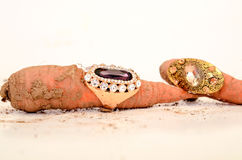picture of a fashion ring stock images