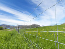 Picture of a fence with shallow depth of field Royalty Free Stock Photos