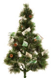 Picture of fir-tree with a lot of money Stock Images