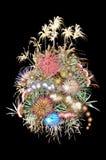 Fireworks flower arrangement Stock Photos