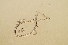 Picture of a fish sun on sand Stock Images