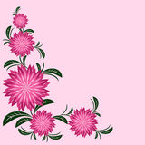 Floral border with chrysanthemums. Royalty Free Stock Images