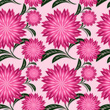 Floral seamless pattern with chrysanthemums. Stock Image