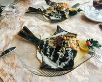 Fish dish with sea food in the restaurant stock photo