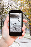 Picture of footprints in first snow in city park Stock Images