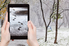 Picture footprints in first snow in urban park Royalty Free Stock Images