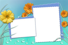 Picture Frame. Spring flowery picture/text frame Royalty Free Stock Images