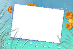 Picture Frame. Spring flowery picture/text frame Stock Photo