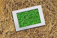 Picture frame on the background stack of hay Royalty Free Stock Image