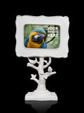 Picture Frame (Bird Photo in Frame is Mine) Royalty Free Stock Photos