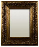 Picture frame with canvas Royalty Free Stock Images