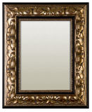 Picture frame with canvas Stock Images