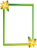 Picture frame with two flowers Stock Photography