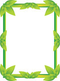 Frame with green leaves Stock Photography