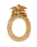 Picture Frame Gold Fancy Pineapple Shape Stock Photo