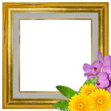 Picture frame gold wood frame and flower colorful for background Stock Photography